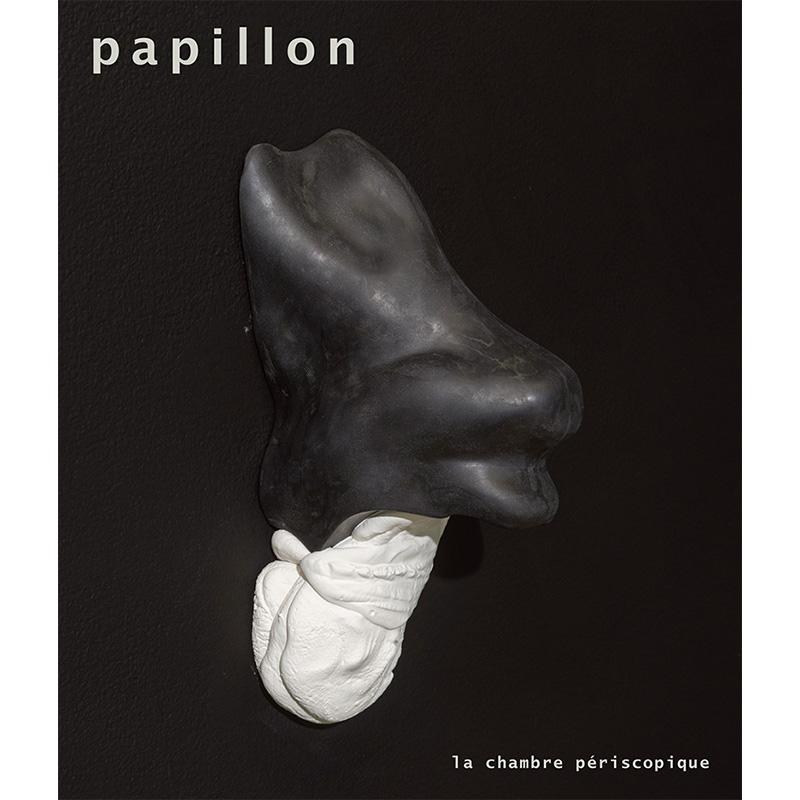Dominic Papillon - couverture